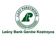 Logo Lasy Państwowe. Junique - tłumaczenie konferencji Poznań